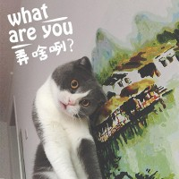 What are you弄啥咧